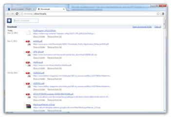 RenBED Google Chrome download manager